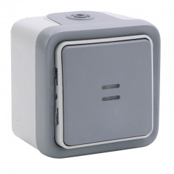 Legrand - Interrupteur ou va-et-vient témoin câblage existant Plexo complet IP55 saillie 10AX 250V - gris - Réf : 069710